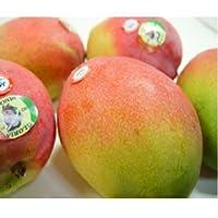父の日ギフト メキシコ産 アップルマンゴー 3個 (1個330g~350g)+黄色い薔薇 【6月18日~6月21日の間のいずれかの日お届け】