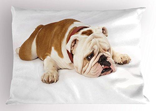 Ambesonne English Bulldog Pillow Sham, Sad and Tired Bulldog Laying Down European Pure Breed Animal Photography, Decorative Standard Size Printed Pillowcase, 26' X 20', Brown Cream