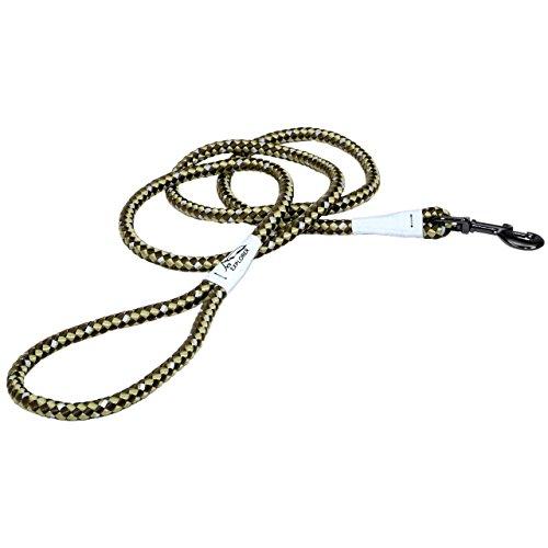 Coastal - K-9 Explorer - Reflective Braided Rope Snap Dog Leash, Fern, 06'