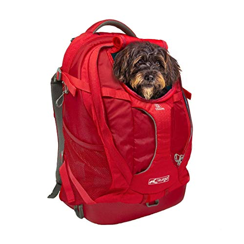 Kurgo Dog Carrier Backpack for Small Dogs and Cats, G-Train Pet Backpack Carrier, Airline Approved, Cat Backpack, Small Dog Backpack for Hiking and Travel, Waterproof Bottom, Chili Red