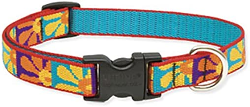 Lupine 3/4-Inch Crazy Daisy Adjustable Dog Collar
