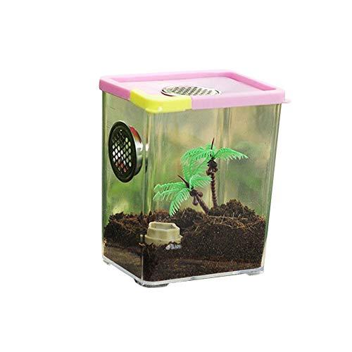 VENTDOUCE Terrarium Reptilien Fütterungsbox Acrylglas Spinne Terrarium Transportbox Belüftete Reptilienzucht Box Zuchtbox Zuchtbehälter für Eidechse Spider Scorpion-10.5cmx8cmx13cm