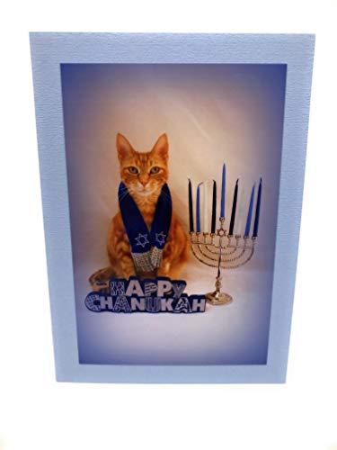 Cat Hanukkah Card (Set of 5)