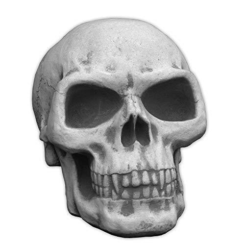 gartendekoparadies.de Totenschädel Totenkopf Schädel Halloween Skelett Dekoschädel Steinguss frostfest