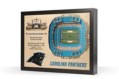 NFL Carolina Panthers 25-Layer Stadiumviews 3D Wall Art