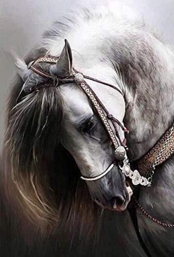 Diopn 5D Diamant Schilderen Hot Koop Paard Cross Stitch Gedrukte Kits Teken Een Diamant Foto Strass Borduurwerk (Rond Diamant 30 * 40) 40 * 50