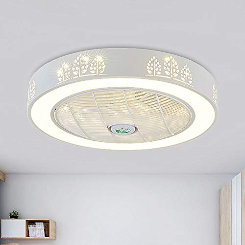 SUSUO 24 Inch Ceiling Fan with Lights - Starry Sky Ultrathin...