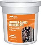 Horse Electrolyte Supplements
