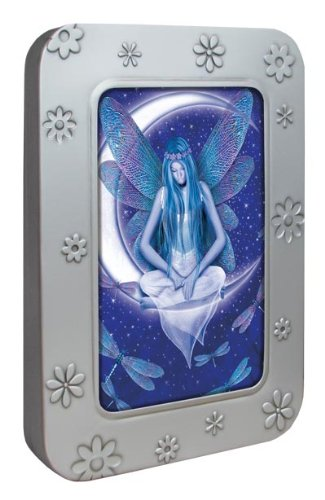 Tree-Free Greetings Noteables Notecards In Reusable Embossed Tin, 12 Card Assortment, Recycled, 4 x 6 Inches, Moon Fairy, Multi Color (76039)