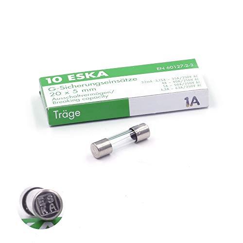Eska - Lote de 10 fusibles temporizados (T), cristal, 250 VAC, 5...