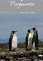 Mit Pinguinen durch das Jahr (Wandkalender 2022 DIN A2 hoch): Dieser Pinguin Kalender begleitet Sie durch das Jahr und bietet genuegend Platz fuer Terminnotizen (Planer, 14 Seiten )