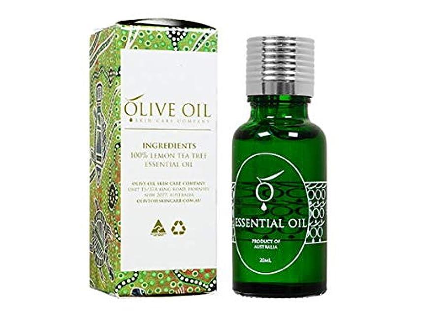 委員長リラックス差し引くOliveOil エッセンシャルオイル?レモンティーツリー 20ml (OliveOil) Essential Oil (Lemon Tea Tree) Made in Australia