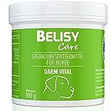 BELISY  Darm Vital  Darmkur für Hunde - 100 g Darm Pulver mit Probiotika & Präbiotika - Darmsanierung nach Wurmkur, Durchfall & Antibiotika - Hergestellt & Laborgeprüft in Deutschland