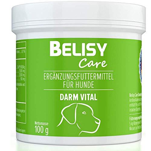BELISY > Darm Vital < Darmkur für Hunde - 100 g Darm Pulver mit Probiotika & Präbiotika - Darmsanierung nach Wurmkur, Durchfall & Antibiotika - Hergestellt & Laborgeprüft in Deutschland