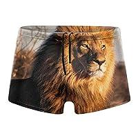 ビッグライオン 水着 メンズ 競泳水着 ファッション 男性 スイムウェア 水泳 競泳用 フィットネス用 水泳パンツ