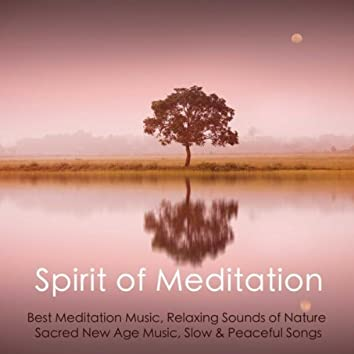 Spirit of Meditation - Best Meditation Music, Relaxing Sounds of Nature, Sacred New Age Music, Slow & Peaceful Songs