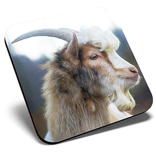 Posavasos cuadrados con pelo rizado, diseño de cabra salvaje | Posavasos de calidad brillante | Protección de mesa para cualquier tipo de mesa #12552