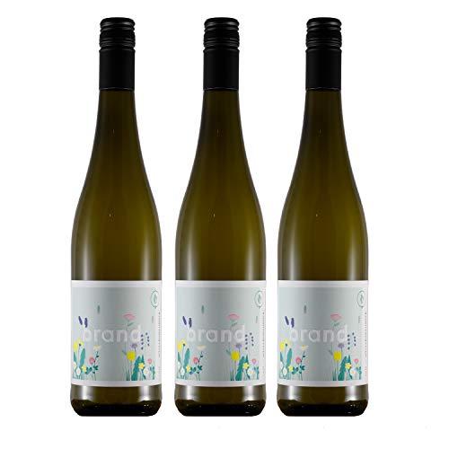Weinhaus Brand | Bio Weißburgunder trocken (2020) | 3 x 0,75l Weißwein | weißer Burgunder vegan | 12,0% | Weisswein | Pfalz Wein | Qualitätswein | Bio-Siegel DE-ÖKO-006 | zum Verschenken