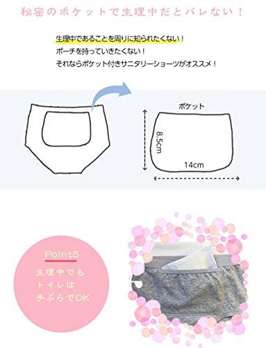 (ジャコンヌ)Jaconneサニタリーショーツポケット付き3枚セット昼用羽根付き対応L0883