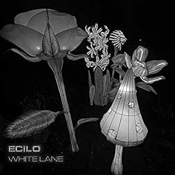 White Lane