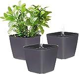 T4U 13CM Auto Riego Plantador Gris Cuadrada Paquete de 3, Maceta para Interiores al Aire Libre Jardines de Windowsill Planta Decorativa para Flores Hierbas