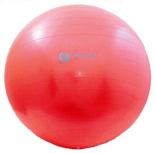 サクライ貿易(SAKURAI) Promark(プロマーク) 野球 バランスボール レベル2 立花龍司監修 65cm TPT0268