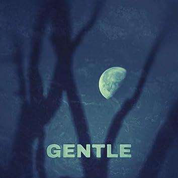 Gentle (feat. Edgxr)