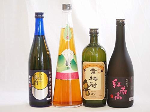 スペシャル梅酒4本セット(貴梅酎スピリッツ25度(和歌山) 紅南高梅酒20度(和歌山) 手作り梅酒(宮崎県) 無添加上等梅酒(鹿児島)) 720ml×4本