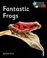 Fantastic Frogs: Phonics Phase 5 (Reading Stars Phonics)