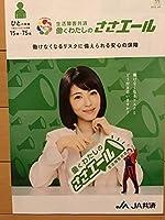 浜辺美波 JA共済 期間限定パンフ A4サイズ 非売品