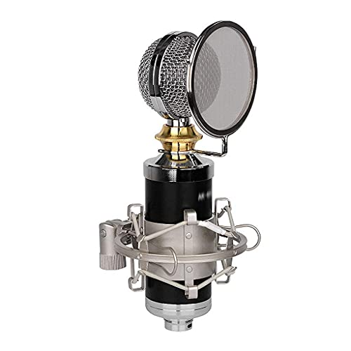 CZYNB Botella Grande Micrófono, Teléfono Móvil Nacional K National K Ancla de Ancla de grabación en Vivo Micrófono Condensador