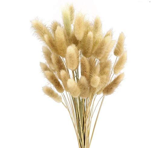 Ruiuzioong getrocknete pampasgras,pampasgras Natur,trockenblumen blumenstrauß deko,pampasgras für inneneinrichtungen,pampasgras natürlicher (Natural)