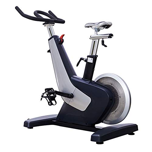 Bicicleta Estática De Spinning Fitness, Profesional Bicicleta Indoor, Volante Dinámico De Control Magnético De 8 Kg, Múltiples Posiciones De Conducción, Ajuste De Resistencia De Magnetrón, Mudo