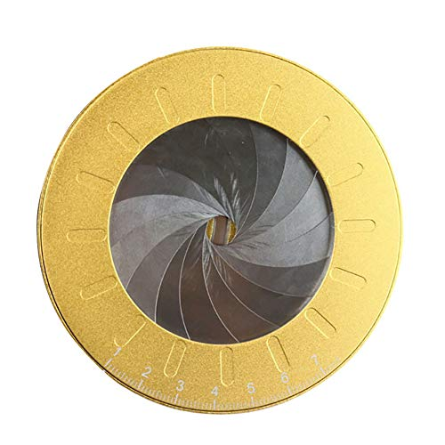 Herramienta para hacer dibujos circulares, herramienta de dibujo circular, plantilla circular de 360 grados, tamaño grande, metal inoxidable, plantilla circular de medición ajustable, dorado