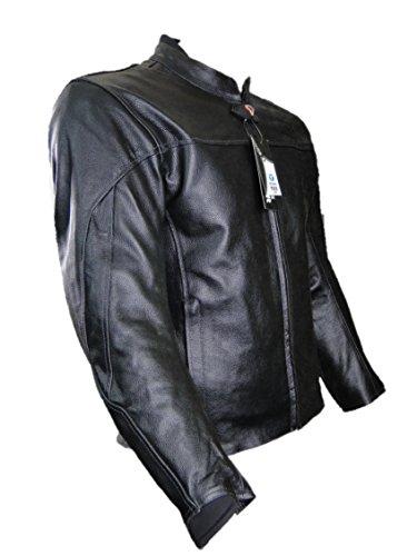 BULL Basic Lederjacke (XL)