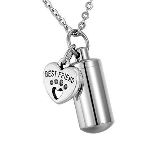 HooAMI Best Friend Pet Paw Heart Cylinder Cremation Urn Necklace Memorial Keepsake Pendant Ashes Holder - Free Engraving