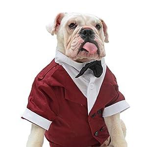 Lovelonglong Bulldog Costume Dog Suit Formal Tuxedo with Black Bow Tie Wedding Clothes for Pugs/French Bulldog/English Bulldog/American Pit Bull Brown B-M