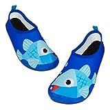 Kids Water Swim Shoes Barefoot Aqua Socks Shoes Quick Dry Non-Slip Baby Boys & Girls (Light Blue Fish, 26/27)