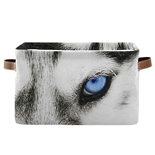 JinDoDo - Cestas cuadradas de almacenamiento con ojos azules de animales, caja de almacenamiento plegable, impermeable, interior para armario de baño, juego de 1