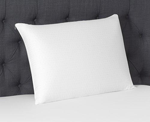 Beautyrest Latex Foam Pillow - 100% Talalay Latex Pillows - Queen