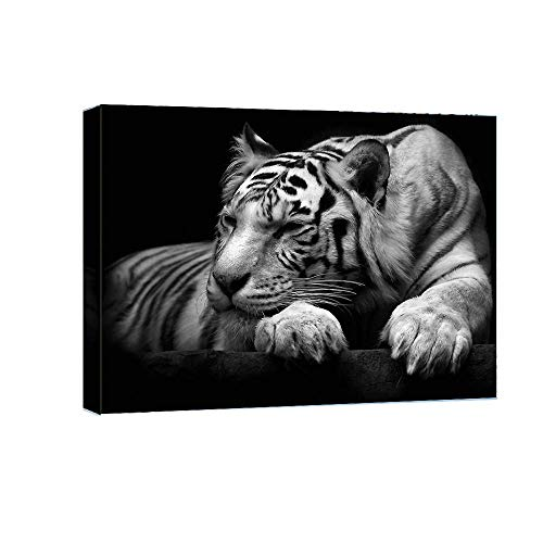 Vijf Arte Black White Tiger Animal Painting- Canvas Art Wall Decor Picture Print Framed -16