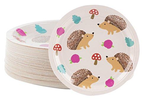 Platos desechables – 80 platos de papel, Erizo Suministros de fiesta para aperitivos, almuerzo, cena y postre, cumpleaños de niños, 9 x 9 pulgadas