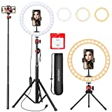 10.2 inch Selfie Ring Light with Tripod Stand & Phone Tripod Holder, UEGOGO 3 Modes LED Ringlight & Selfie Stick for Makeup/Photography/Live Streaming/YouTube TikTok, Compatible with iPhone/Android