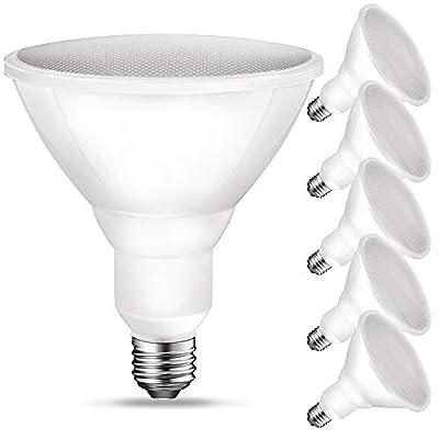 PAR38 LED Flood Light Outdoor Bulb, 5000K Daylight, 90 Watt Equivalent (11W), 900LM, E26 Base, Non-Dimmable, UL, 6 Pack