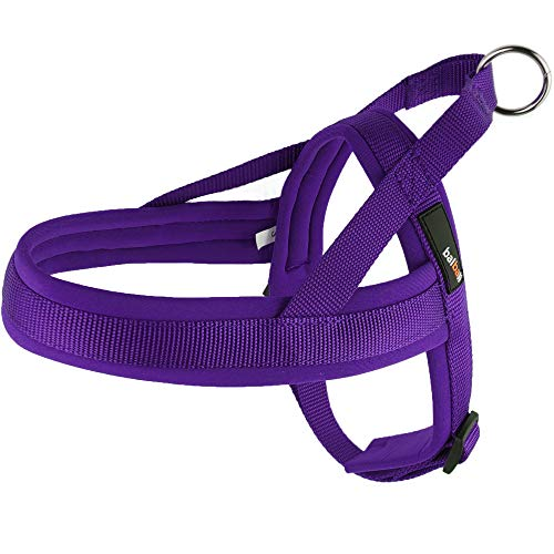balbali Dog Harness Easy On and Off with 1 Clip for Walk with Small Dogs,Vest Harness with Padded Adjustable Neoprene for Pug Life(S,Purple)