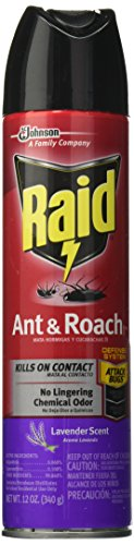 Price comparison product image Raid Ant & Roach Killer Spray for Listed Bugs,  Insect,  Spider,  For Indoor Use,  Lavender Scent,  12 Oz