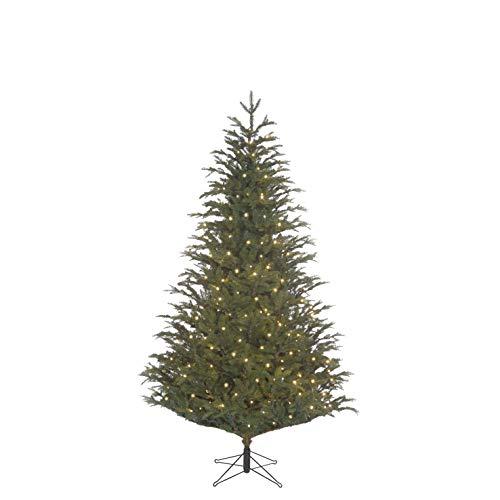 Black Box Trees Frasier 1880-h185 Sapin de Noël LED 288L Tips 1880-h185 x d124cm PVC/PE Vert