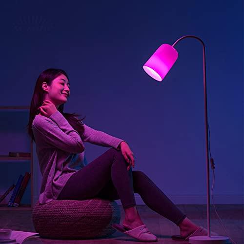 ACMHNC Lámpara de Pie Salon Regulable Con Control Remoto, Lámpara de Lectura Moderna Con Cambio de Color RGB, Enchufe: E27, Luz de Piso Para Dormitorio Habitación, Estudio, Luz Cuidado Ojos, Blanco