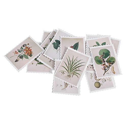 SUPVOX Adesivi Vintage francobolli Adesivi Decorativi per Piante Adesivi per sigilli per la Decorazione di Album 3PCS