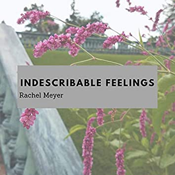 Indescribable Feelings
